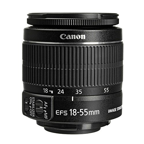 Canon T6 EOS Rebel DSLR Camera with EF-S 18-55mm f/3.5-5.6 IS II and EF 75-300mm f/4-5.6 III Lens and Transcend Memory Cards 32GB 2 Pack Plus Accessory Bundle