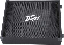 Peavey PV 12M 2-Way Floor Monitor