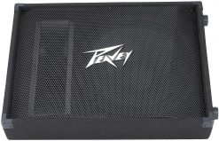 Peavey PV 15M 2-Way Floor Monitor